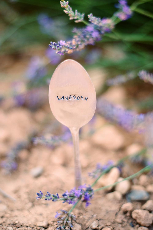 Fotos von einem Paarshooting in der Provence fotografiert von Hochzeitsfotograf XOANDREA